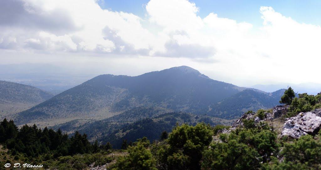 Επόμενη εξόρμηση ΣΑΟΟ: 5 Ιουλίου 2020 Περθώρι – Επάνω Χρέπα – κορυφή