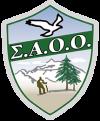 saoo-logo